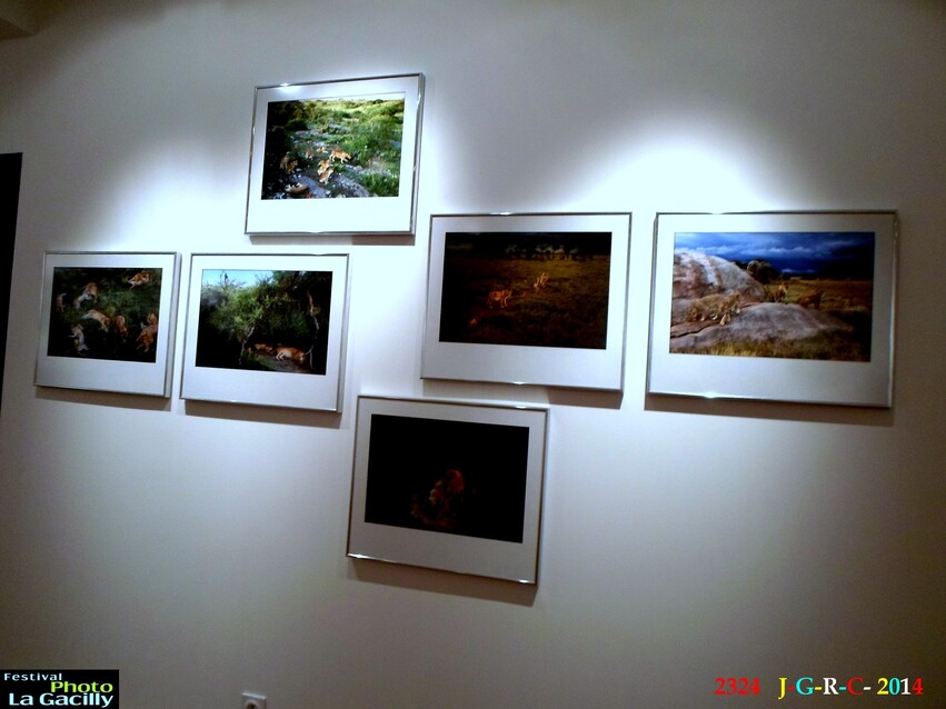 EXPOSITION PHOTO LA GACILLY 56  4/4  23/08/2014