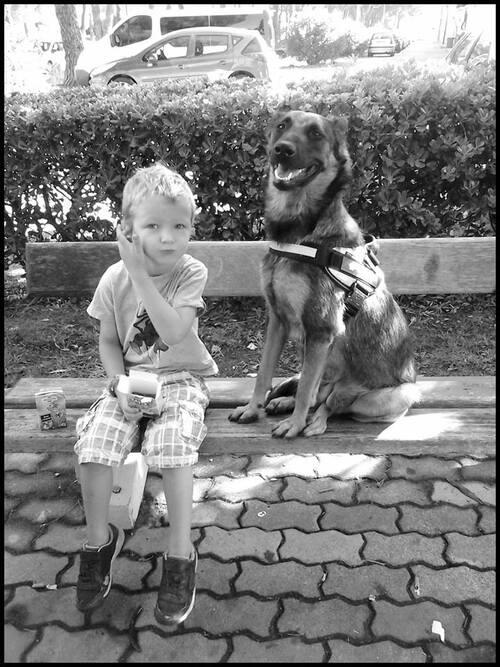 Le respect enfant/chien et chien/enfant
