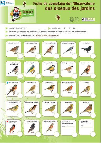 Les 24 et 25 janvier 2015, comptage national des oiseaux de jardins...