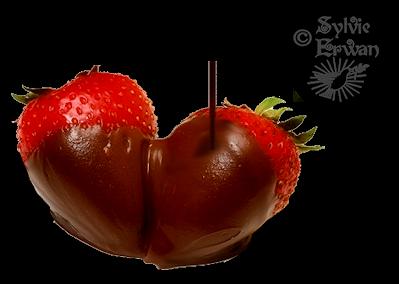 Tubes chocolats création 10