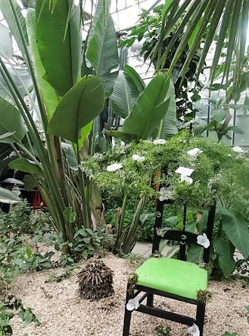 Portes ouvertes à l'école d'horticulture de Tournai