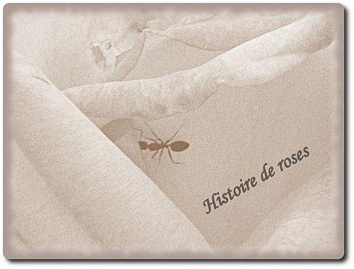 histoire--de-roses--5-2.jpg