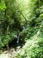 Cascade Monteverde