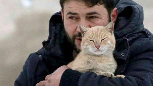 Le bienfaiteur des chats d'Alep