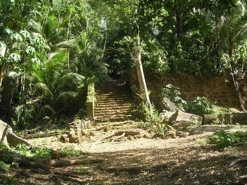 Guyane-001.jpg