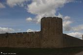 Aigues-Mortes (Gard)