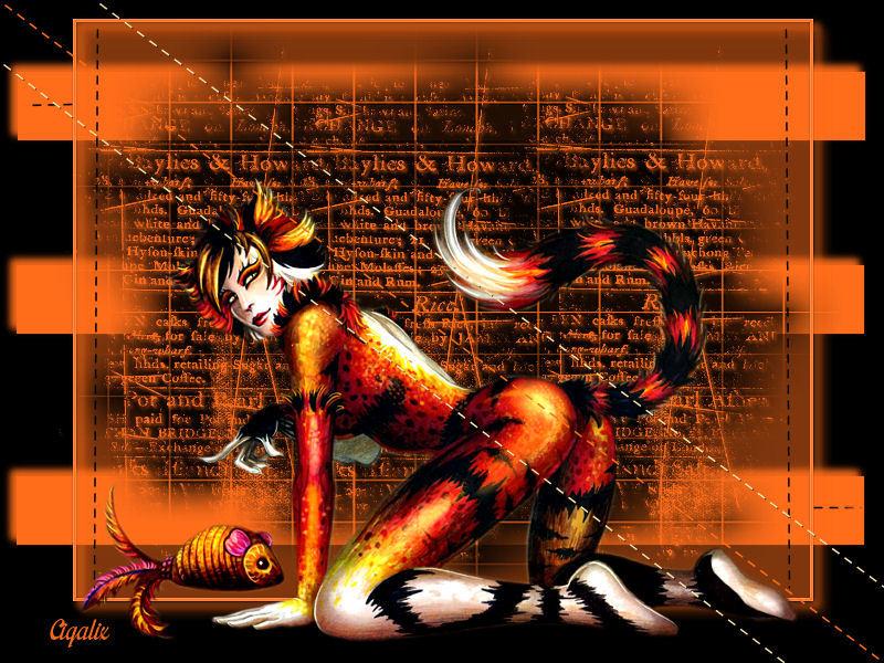 Cat Woman de Nadou
