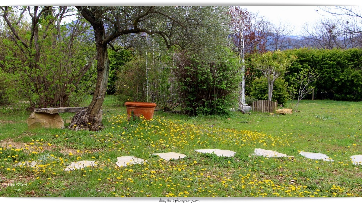 Le printemps à la maison