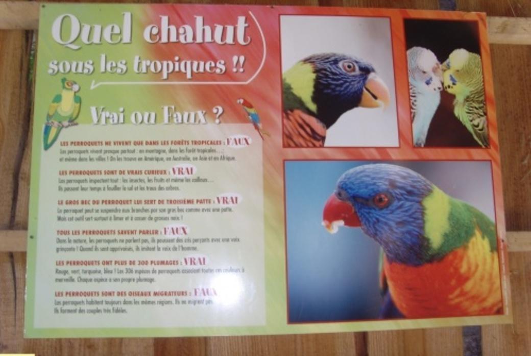 TROPICAL PARC DE SAINT JACUT  56  3/5