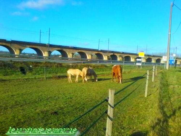 Entre Langon et Saint-Macaire on trouve le viaduc de Langon (211 m) sur la Garonne, reconstruit en 1996-1998, et le viaduc de Saint-Macaire (631 m).