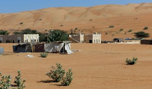 Oman Désert du Wahiba