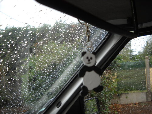Petit Panda ?