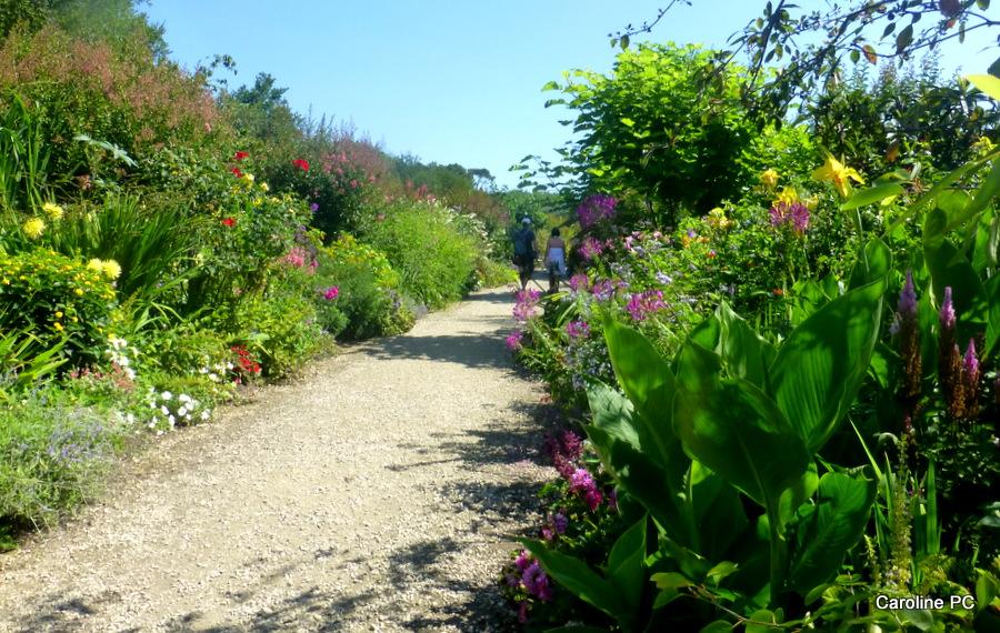 La Promenade fleurie 2015