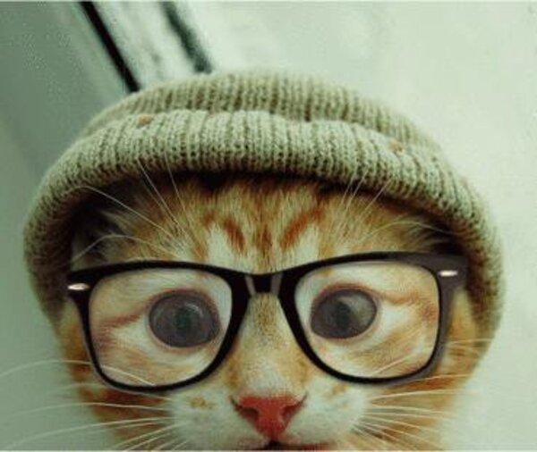 Prado et ses nouvelles lunettes      lol