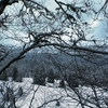 paysage-jura-neige[1].jpg
