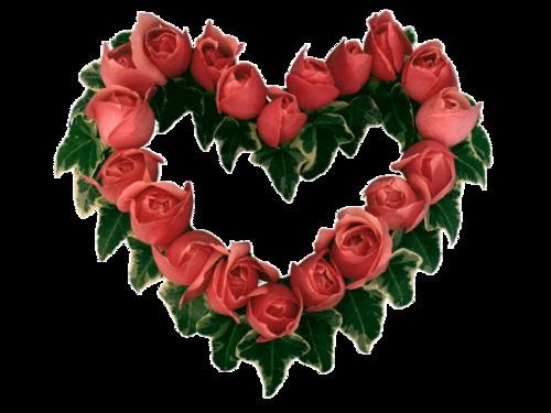 Coeurs fleurs / 2
