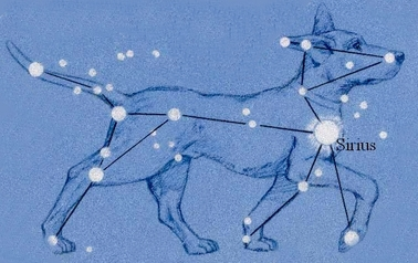 XXIII - Armure du Grand Chien (Canis Major Cloth)