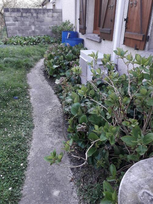 Un peu de jardinage et blagues