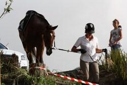 qualifications loisir sur Miel Vert Janvier 2014