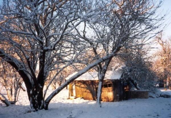 neige-a-Conde-en-1998.jpg