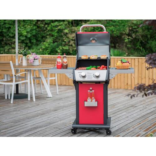 Small Electric Barbecue - Buy Electric, Charcoal and Propane Grills At Best Prices
