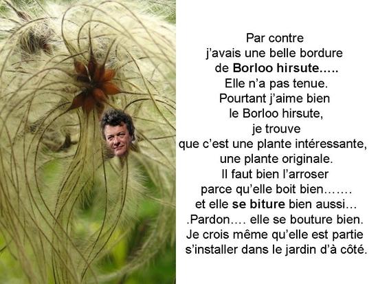 politique_et_jardinage_006