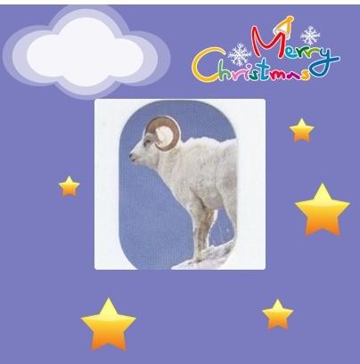 mouflon-bleumerry-christmas.jpg