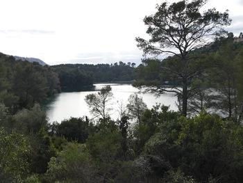Au bord du lac, en contre-jour