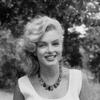 Icons Marilyn Monroe