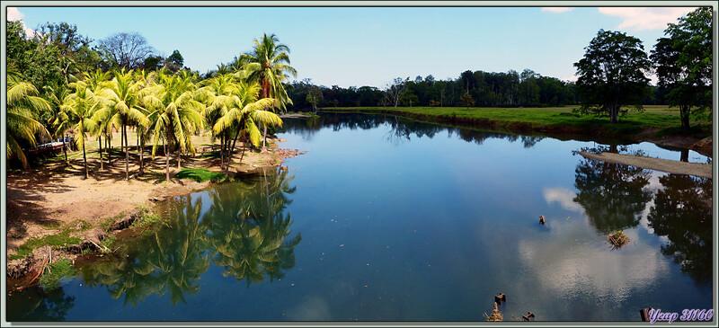 Rio Rincon près de son embouchure - Péninsule de Osa - Costa Rica