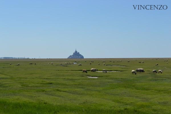 Normandie mont saint michel 813