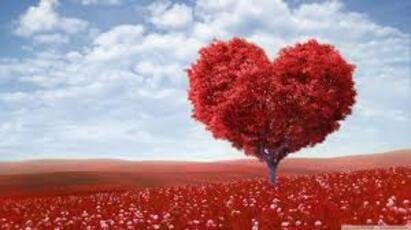 Grand concours sur le thème de l'amour.