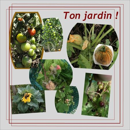 Ton_jardin