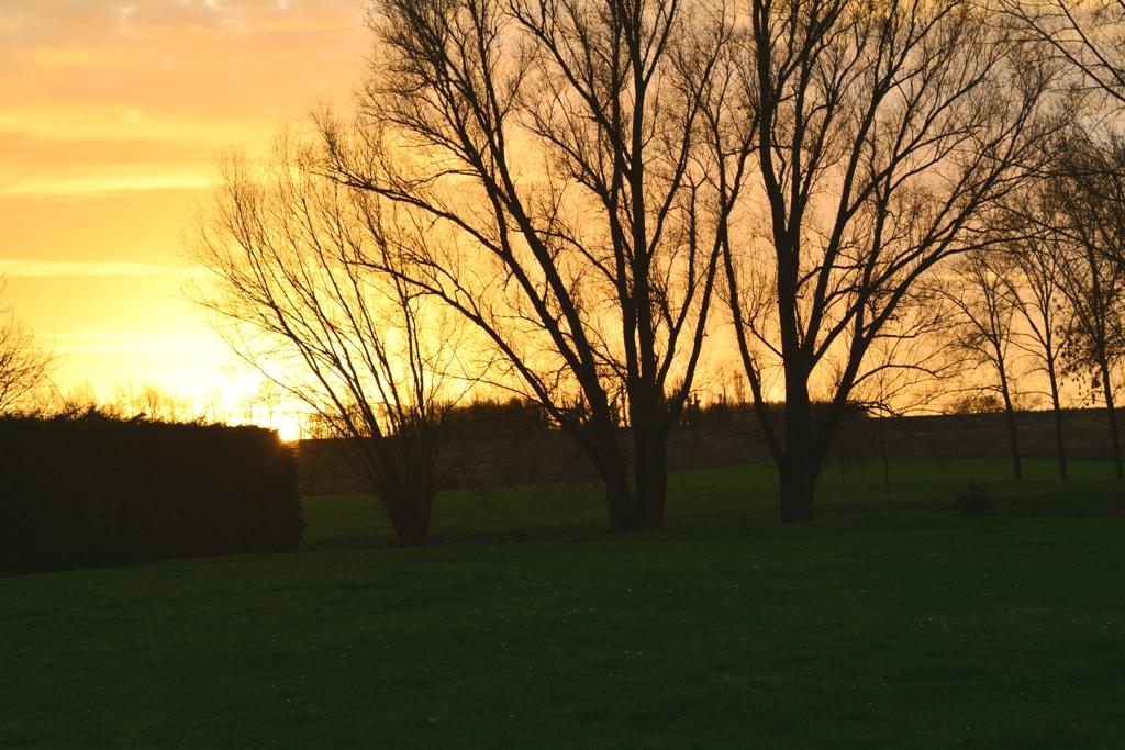 Lever de soleil sur l'année nouvelle...