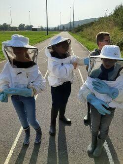 Découverte des ruches du lycée