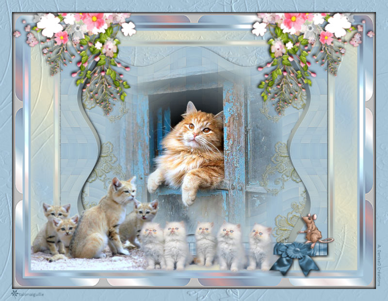 *** For Cat Lovers ***