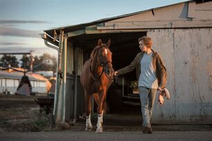 La Route sauvage (Lean on Pete) : Photo Charlie Plummer