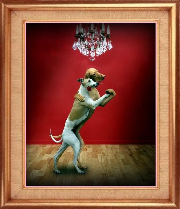 Tu Danses mon chou