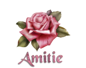 **Fraîcheur Matinale**Anim