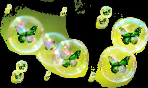 Tubes bulles de Papillons