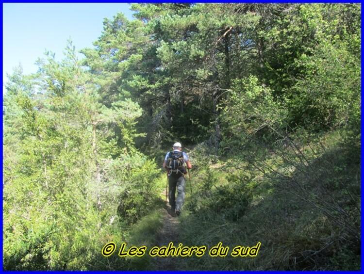 Gorges du Tarn, les échelles du rocher Cinglegros
