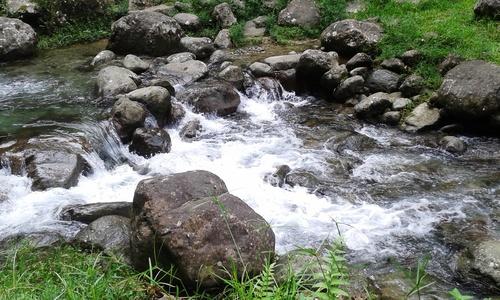 Cascade de l'Alma Martinique