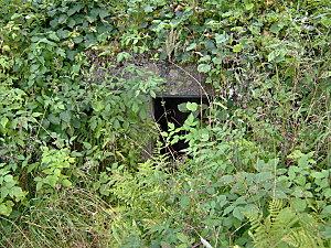col de engin et sentier bunkers 096