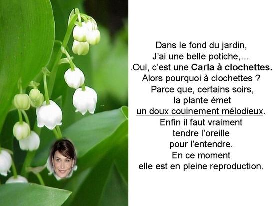 politique_et_jardinage_004