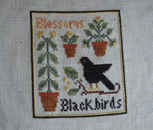 LHN Blossom and blackbird