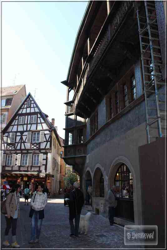 Alsace Haut-Rhin Colmar Maison Schongauer