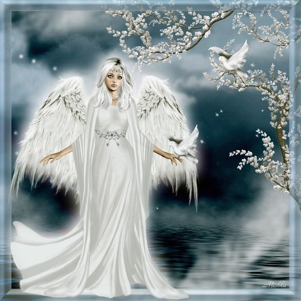 ange-blanc1.jpg