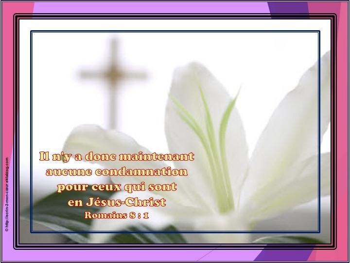 Il n'y a donc maintenant aucune condamnation - Romains 8 : 1