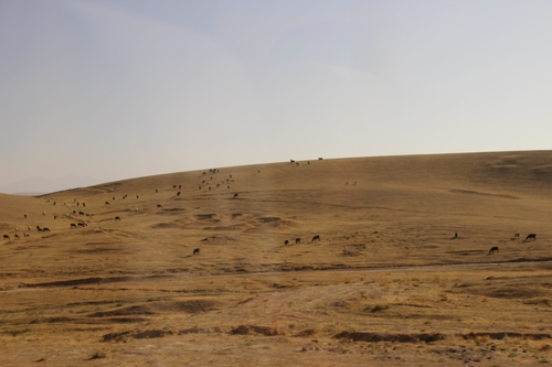 Entre Samarcande et Chakhrissabz