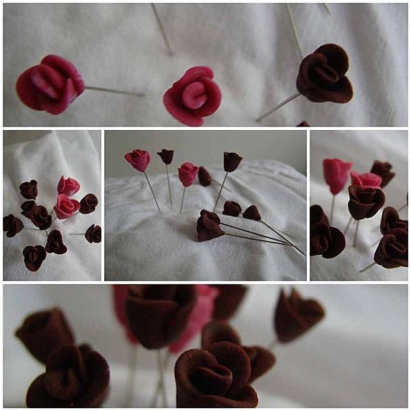 des-roses-qui-piquent